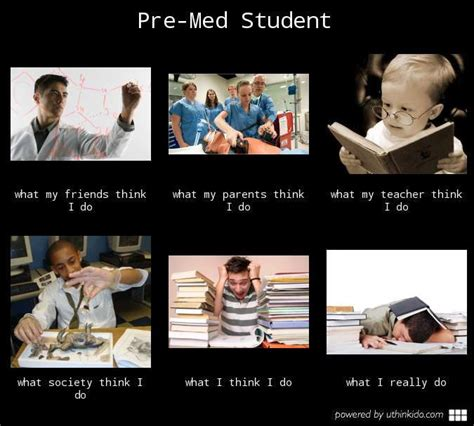 Med School Memes - a real pre med student science jokes pinterest pretty much student and sums it up
