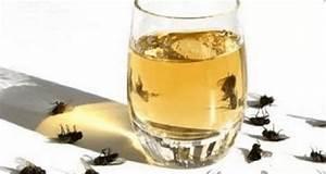 Comment Chasser Les Mouches : pulv risez ce liquide dans votre maison pour chasser les ~ Melissatoandfro.com Idées de Décoration