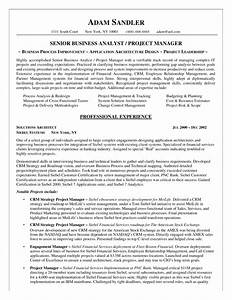 best business analyst resume example template With crm business analyst resume