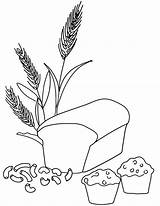 Coloring Wheat Bread Grain Pages Whole Pasta Grains Printable Macaroni Clipart Muffin Drawing Colouring Food Template Breads Loaf Kindergarten Drawings sketch template