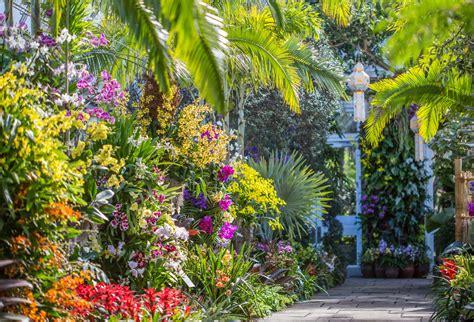 new york botanical gardens show new york botanical garden the orchid show thailand