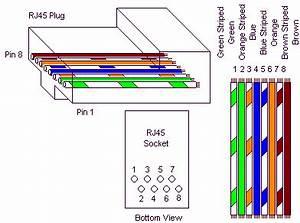Cat 5 Home Networking Wiring Diagram : cat5e wiring schematic diagram wiring ~ A.2002-acura-tl-radio.info Haus und Dekorationen