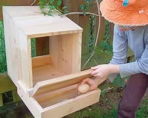 Nid Pour Poulailler : nid pondoir pour poules en bois pour poulailler la ferme ~ Premium-room.com Idées de Décoration