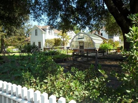 Burbank Gardens by Luther Burbank Home And Gardens Santa Rosa Ca Top Tips