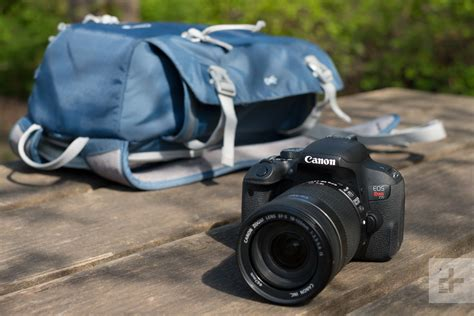 the best dslr cameras for beginners from budget to frame digital trends