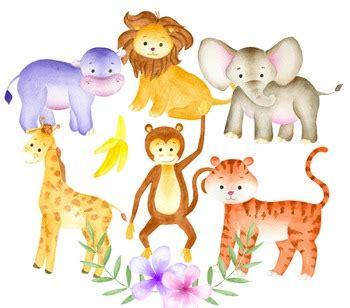 jungle animals clipart watercolor animals animal
