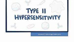 Type Ii Hypersensitivity Reaction  Mechanism And Examples