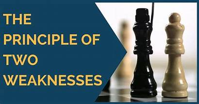 Weaknesses Principle Openings Chess Aggressive Vienna Thechessworld