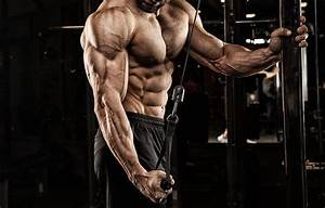 Top 8 Triceps Exercises For Men