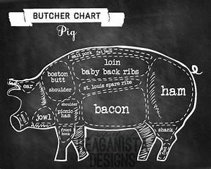 Pig Butcher Chart Chalkboard Pig Parts Poster By