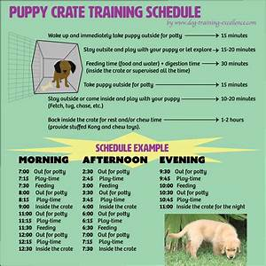 free printable puppy crate training schedule the best With puppy bathroom schedule