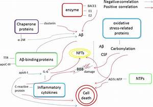 Protein-Based Biomarkers in Cerebrospinal Fluid and Blood ...