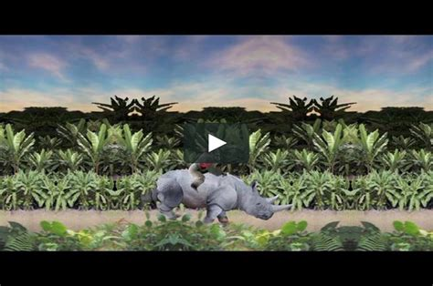 Real Life Donkey Kong Country On Vimeo