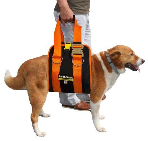 medium harness senior harness when your needs a help