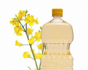 Rapeseed oil clipart Clipground