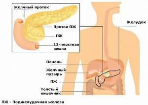 Травы для лечения поджелудочной железы при диабете