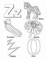 Zinnia Coloring Pages Letter sketch template
