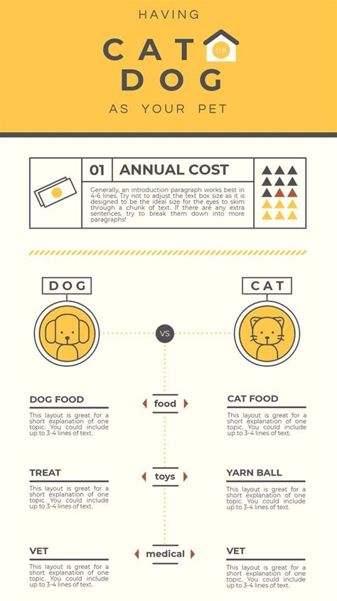 infographic layout   design  comparison infographic