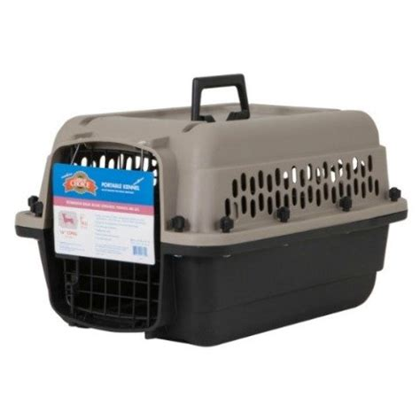 airline carrier requirements 5 best pet carriers and tips for safer airline cargo