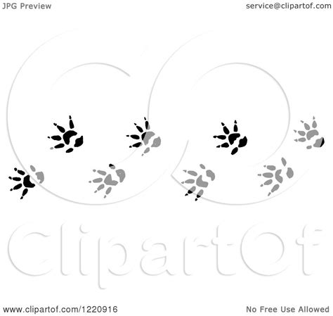 opossum clipart clipart of black and white opossum tracks royalty free