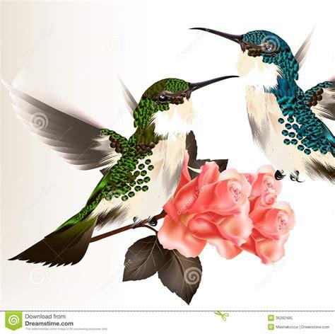 cute valentine card  couple  humming bird  roses