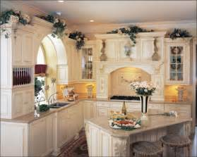 remodel kitchen cabinets ideas cabinets for kitchen remodeling kitchen cabinets