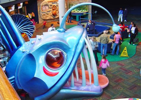 top rated attractions     myrtle beach