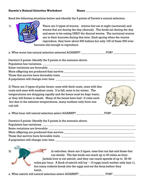 worksheet selection worksheets grass fedjp