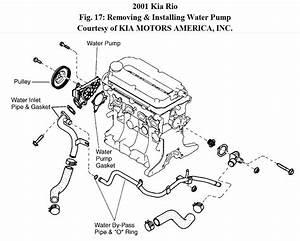 Water Pump Diagram 2003 Kia Rio  Kia  Auto Parts Catalog