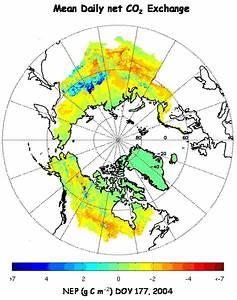 Terrestrial Carbon Flux - Numerical Terradynamic ...