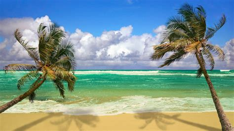 ocean wallpapers beach backgrounds images