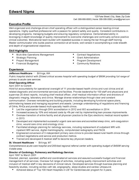 professional healthcare chief operating officer templates