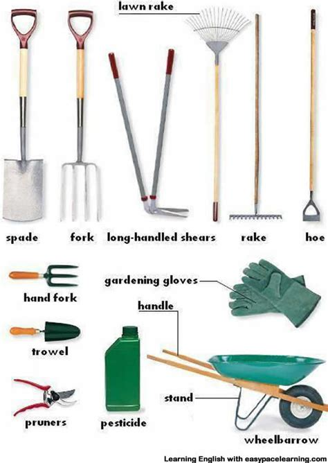 gardeing tools gardening equipment vocabulary with pictures learning english