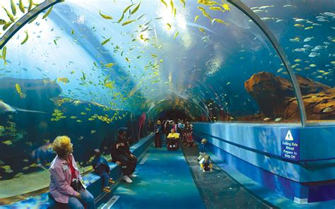 world visits aquarium in united states