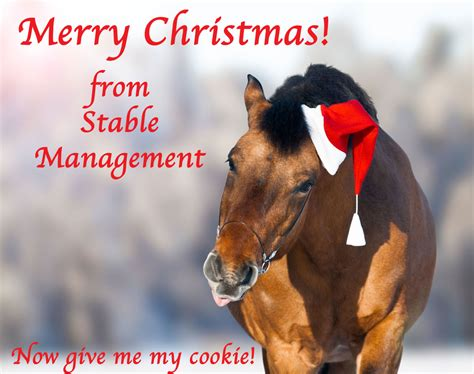 merry christmas  stable management   resource