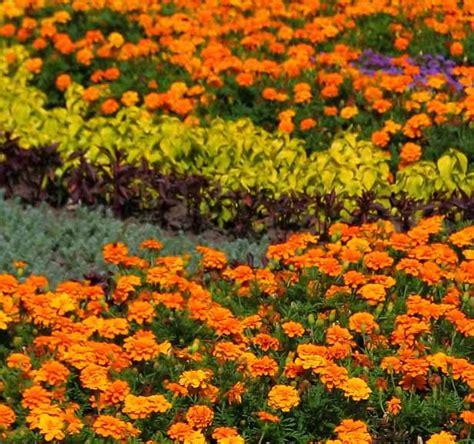 garden types howstuffworks