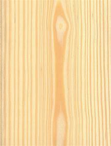 Scots Pine The Wood Database - Lumber Identification