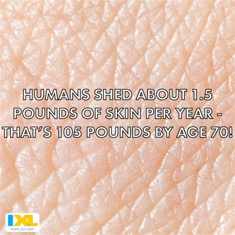 Humans Shed Skin by 17 Best Images About Facts On Silver