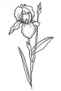 HD wallpapers coloring pages of flowers and gardens
