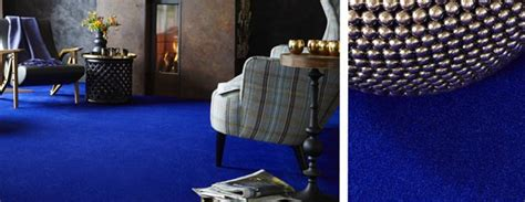 All In One Carpet Cleaning   Carpet kingpin   News   The Columbus Dispatch   Columbus, OH