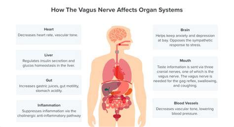 Migraine, Depression, Arthritis, Gut Health, Skin