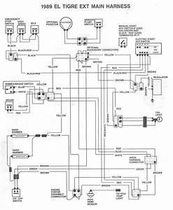 1991 Eltigre Ext Wiring Diagram - Arcticchat Com