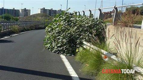 Savesave interpellanza consorzio esproprio asse attrezzato for later. Asse Attrezzato, sporcizia e poca sicurezza stradale ...