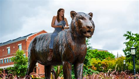 mizzou tiger statue  hot    good