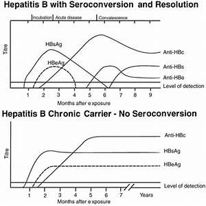 Hepatitis B, Se... Hepatitis B Surface Antibody