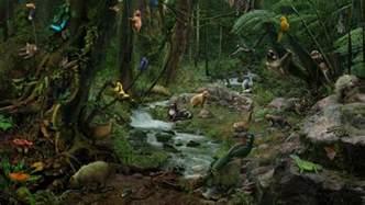 Amazon Rainforest Forest Floor Animals