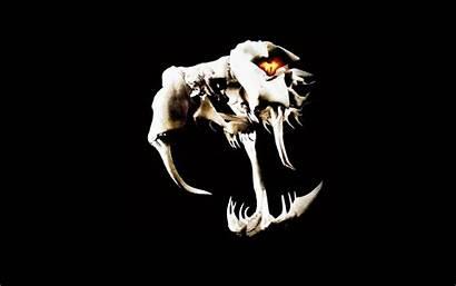 Randy Orton Viper Wwe Logos Wallpapers Skulls