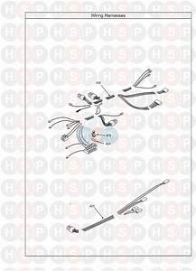 Potterton Performa 18 Sl  Wiring Harness Diagram