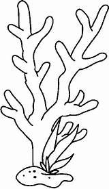 Coloring Seaweed Coral Reef Drawing Drawings Sketch Sea Printable Ocean Under Colouring Sketchite Nature Crafts sketch template