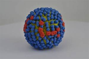 Influenza virus | NIH 3D Print Exchange